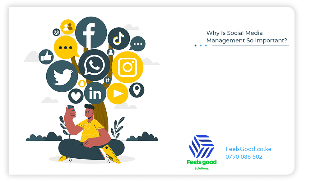 Why Is Social Media Management So Important?
